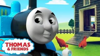 Thomas & Percy on the Farm – Animals 🚂 +more Kids Videos | Thomas & Friends™ Learning
